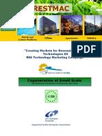 Brochure4_Cogeneration Various Power Gen Tech