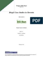 ANNEX 3-36_WP6_D6.4 Case Study Slovenia