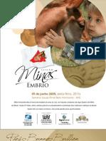 minas embrio