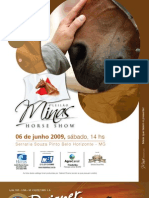 minasHS2009