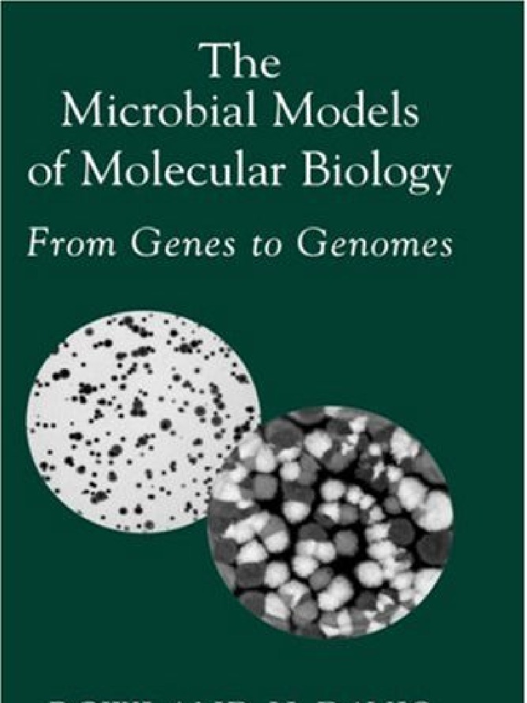 The microbial models of molecular biology heredity model organism fandeluxe