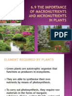 The Importance of Macronutrients and Micronutrients in Plants