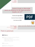 Apresentação DM2013