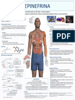 Poster Bioquimica - Epinefrina 2012
