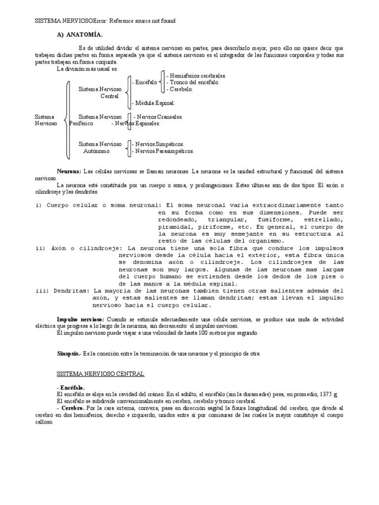 07 Sistema Nervioso.doc