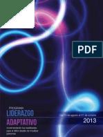 Programa Liderazgo Estrategico 2013