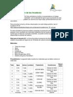4fermentacion_Levaduras