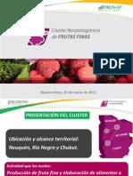 Cluster Norpatagnico de Frutas Finas -Encuentrodeclusters