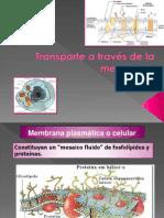 ppt 3 Membrana y Transporte.pptx