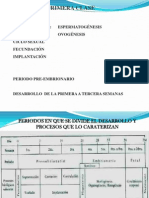 embriologiaclase1-110408223937-phpapp01