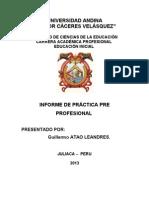 Informe Practica Inicialguilermo