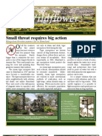 Newsletter Project for Comm232, News Editing for Public Relations