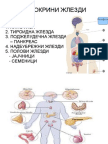 Ендокрин систем