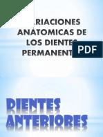 Variaciones Anatomicas de Los Dientes Permanentes Fin