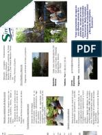 simbiosis folleto