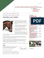Embocaduras, usos y cuidados - Caballos, razas de caballos, fotografías y videos de caballos