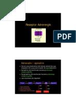 Adrenergic Dopamine Receptor