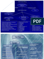 teorias-administrativas