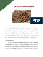 Cultivation of Dioscorea