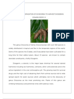 Learn the Propagation of Dioscorea to Harvest Diosgenin