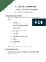 Training Report Format