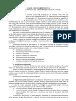 Cazul Viii Romlulment (i) Program de Promovare a Exporturilor de Rulmenti