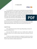 Company Profile ING Vysya