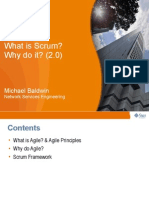 What is Scrum and Why Scrum