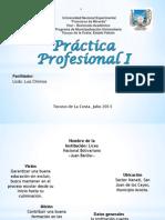 practica profesional I.pptx