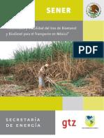 Biocombustibles en Mexixo Estudio Completo