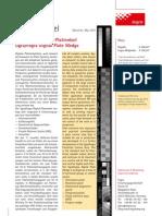 I-Digital Plate Wedge Plattenkeil