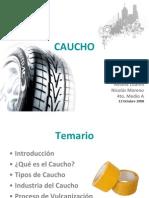 caucho-1223862003917644-9