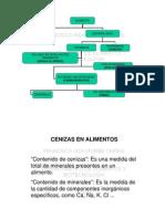 Cenizas_8071.pdf