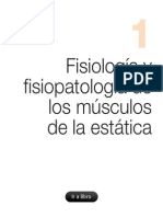 Fisiología y fisiopatología de los músculos de la estática