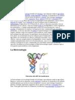 BiotecPart1