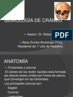 SEMIOLOGÍA DE CRÁNEO2