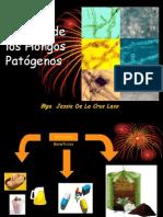 EstudHongosPatog