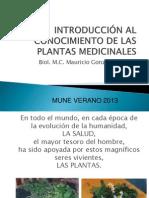 INTRODUCCIÓN A LAS PLANTAS MEDICINALES MUNE 2013