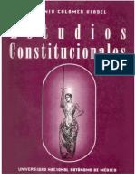 Estudios Constitucionales - UNAM 1994 (Antonio Colomer Viadel)