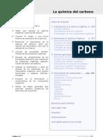 quimica del carbono.pdf