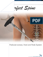 Pedicular Screw and Hook System
