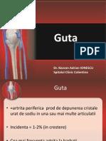 Guta_2012