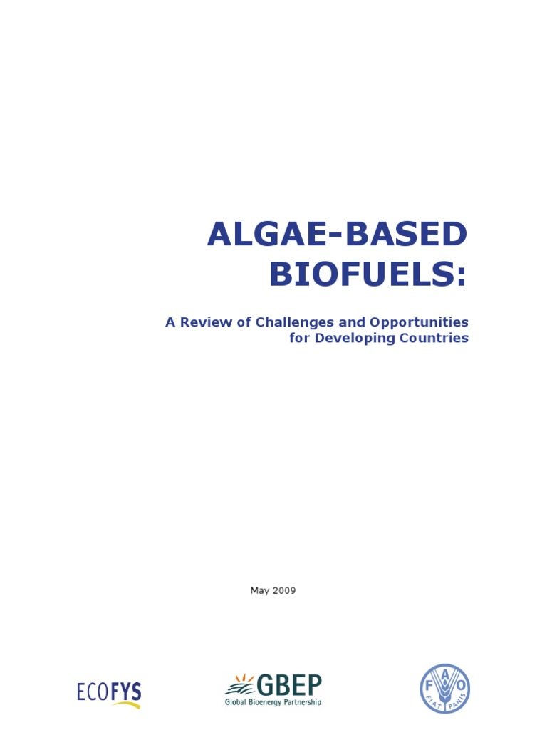 Essay on biofuels