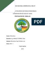 monografia de silvicultura Nº 3