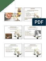 florais_de_bach.pdf