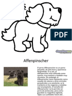 Tipos de Perros Diapositivas