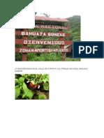 La Biodiversidad en El Valle de Ayapata y El Parque Nacional Bahuaja Sonene