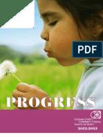 2013 SCCMHA Progress Report