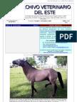 Archivo Veterinario Del Este - 4T_2009