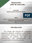 diapositivas-estudiodemercado-1-110622140326-phpapp02 (2)
